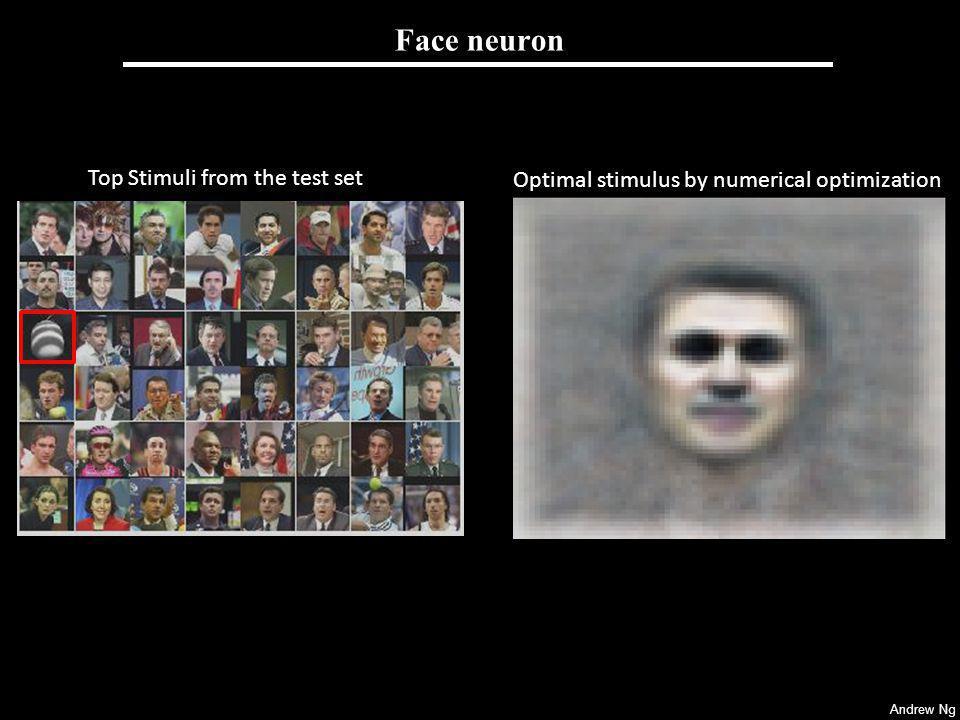 Face neuron [Raina, Madhavan and Ng, 2008]